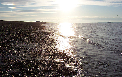 Stokes Bay - illustrating Hampshire Web Design